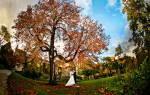 5 идей для свадебной фотосессии осенью на природе