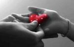 Примеры предложения руки и сердца девушке в стихах