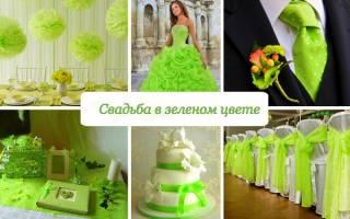 Оформление зеленой свадьбы: декор зала в изумрудном, мятном, оливковом цвете, оттенке шампань